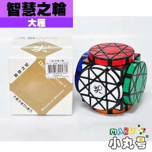 大雁 - 異形方塊 - 智慧之輪