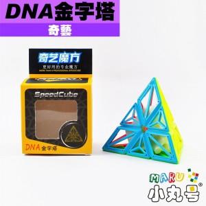 奇藝 - pyraminx - DNA金字塔